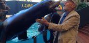 В мире животных с Николаем Дроздовым