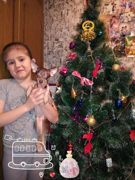 Арина Айнуровна Рафикова