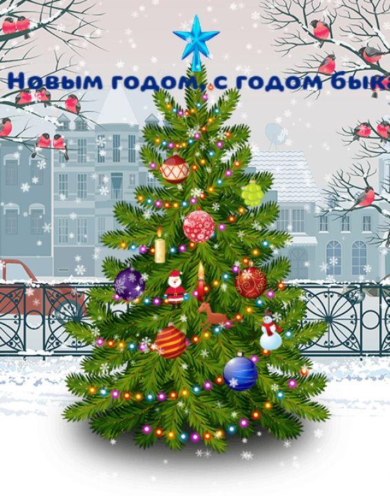 Максим Гасанбеков