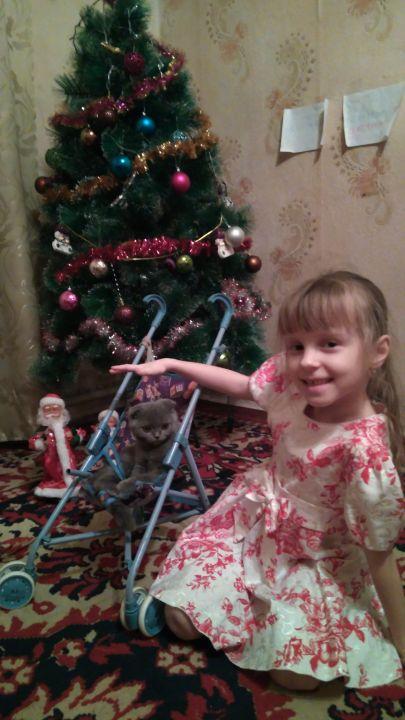 Емельянова Александра Сергеевна