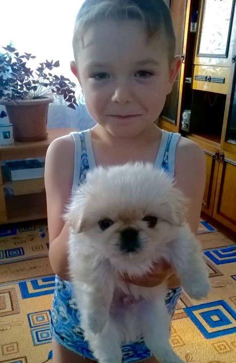 Лужецкий Максим Александрович