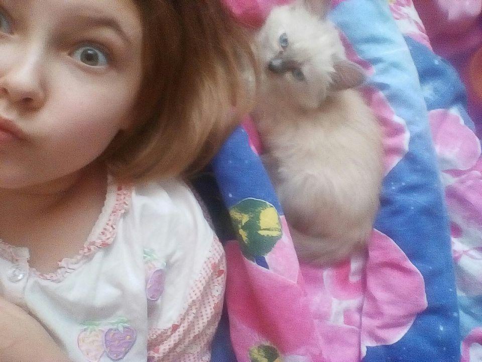 Петрова Валерия Александрова