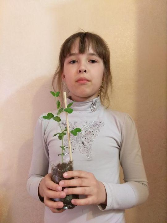 Гусельникова Марина Денисовна