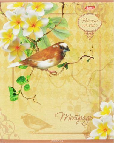 Hatber Тетрадь Райские птички 48 листов в клетку 14819