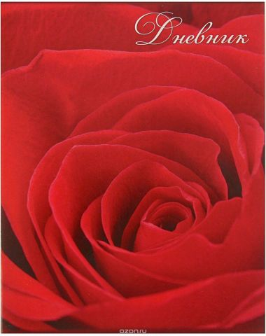 Calligrata Дневник школьный Роза