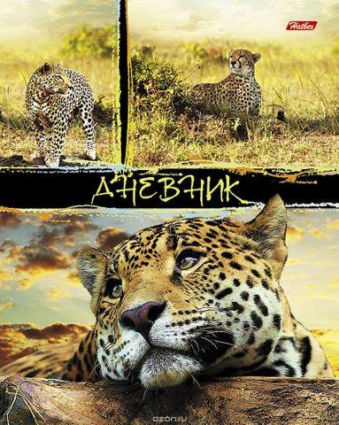 Hatber Дневник школьный Лайт Дикие кошки