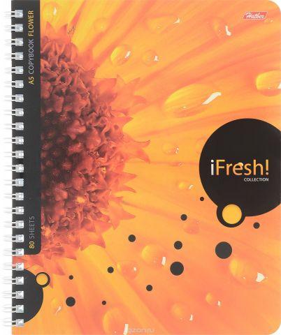 Hatber Тетрадь iFresh 80 листов в клетку цвет оранжевый