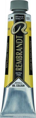 Royal Talens Краска масляная Rembrandt цвет 223 Желтый неаполитанский насыщенный 40 мл