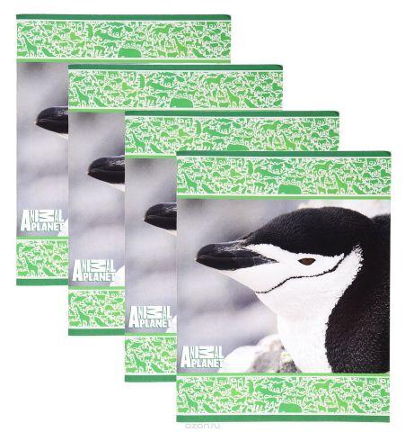 Action! Набор тетрадей Animal Planet Птицы 48 листов в клетку 4 шт