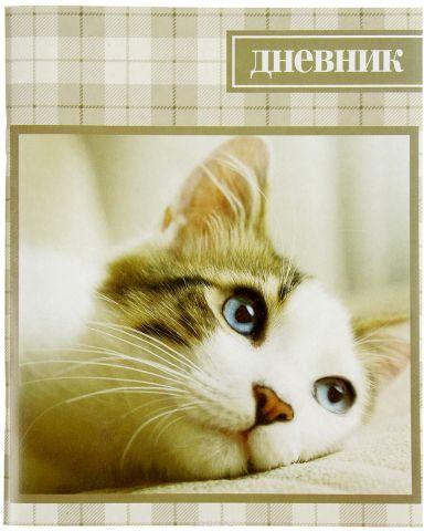 Дневник школьный Кошка 2997729