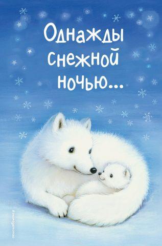 Однажды снежной ночью...
